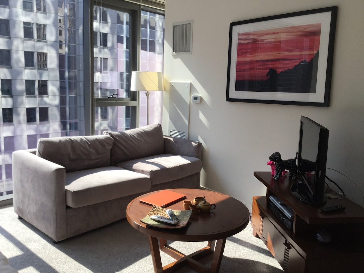 Fully equipped studio in the loop