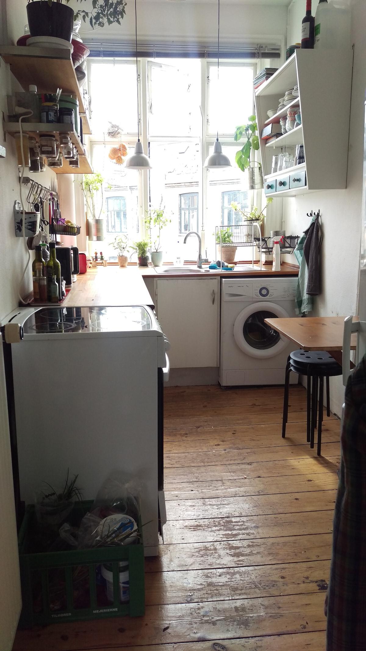 Cosy 2 bedroom Vesterbro apartment