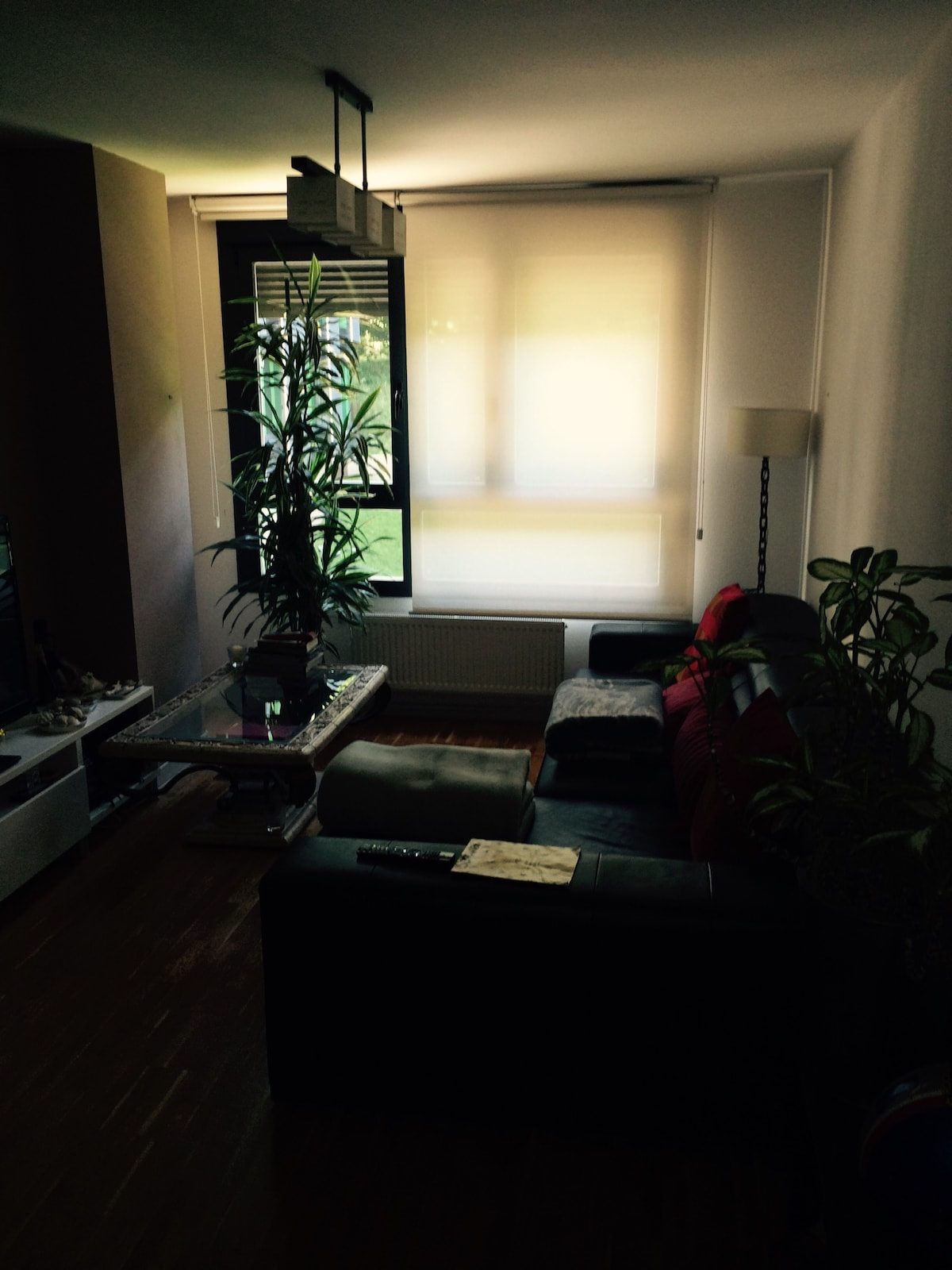 Room in my aparment. For 2 or 3