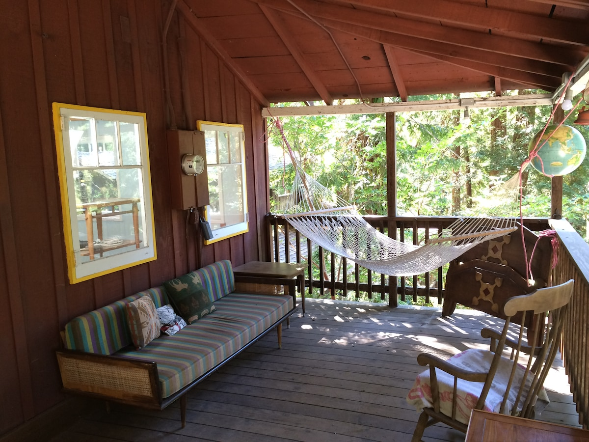 Camp Noon: A Sunny Redwood Retreat
