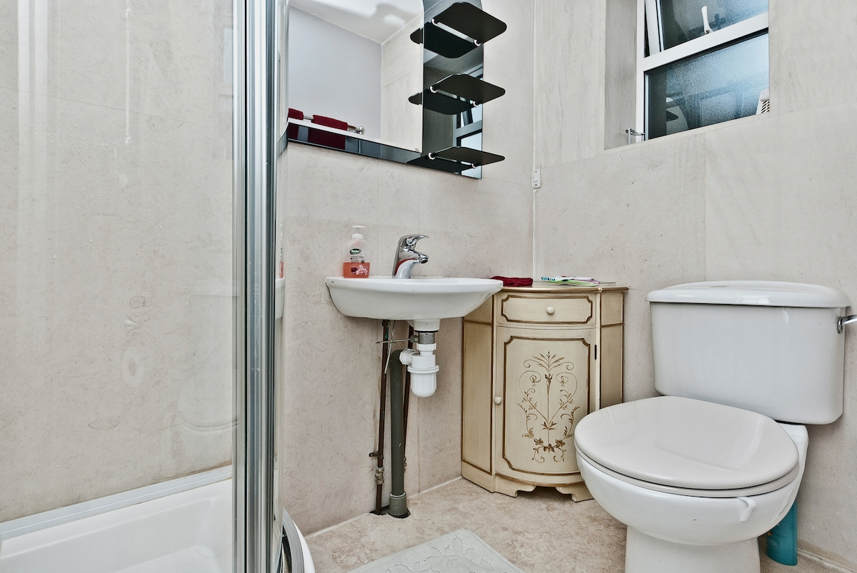 Toilet with a luxurious shower to the left