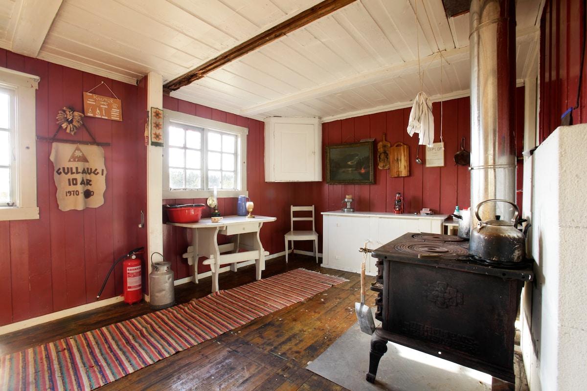 Cabin w/view in Norway (Oslo)  #1