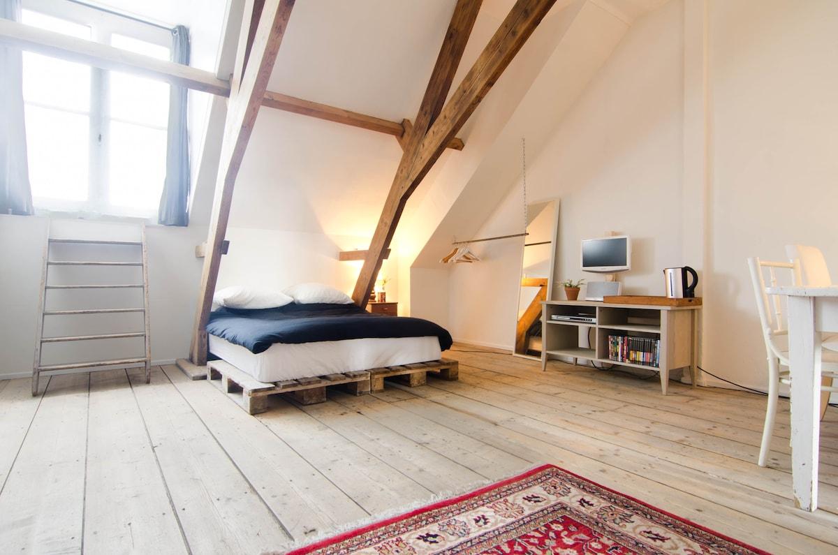 Cozy attic in city centre FreeWIFI