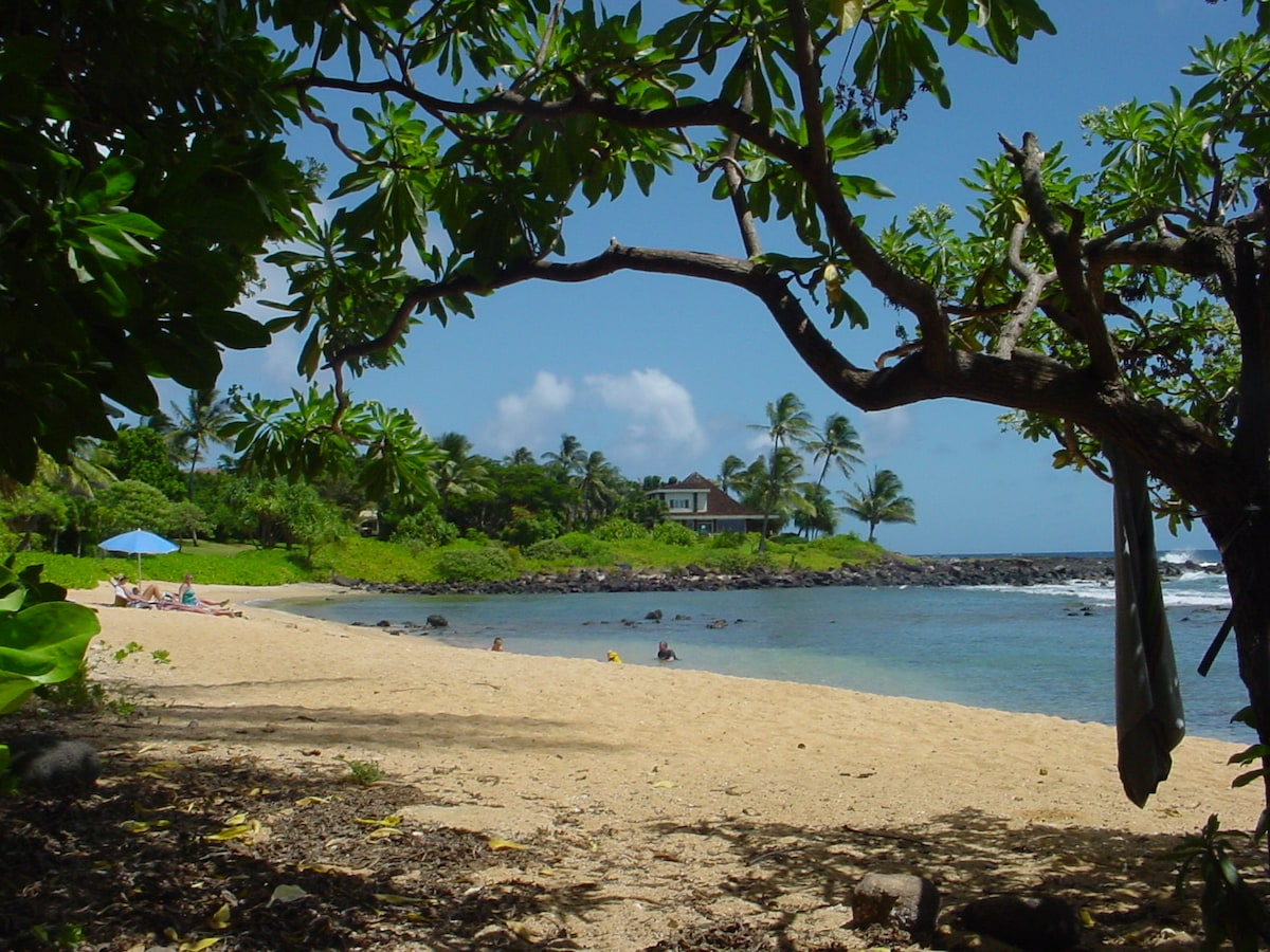 Baby Beach only 75' from your front door.