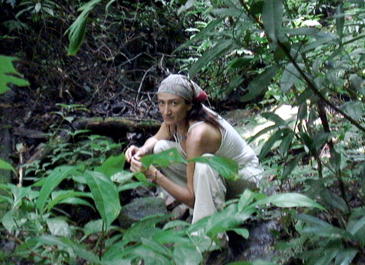Amania From Chacarita, Costa Rica