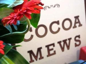 Cocoa Mews From George Town, Malaysia