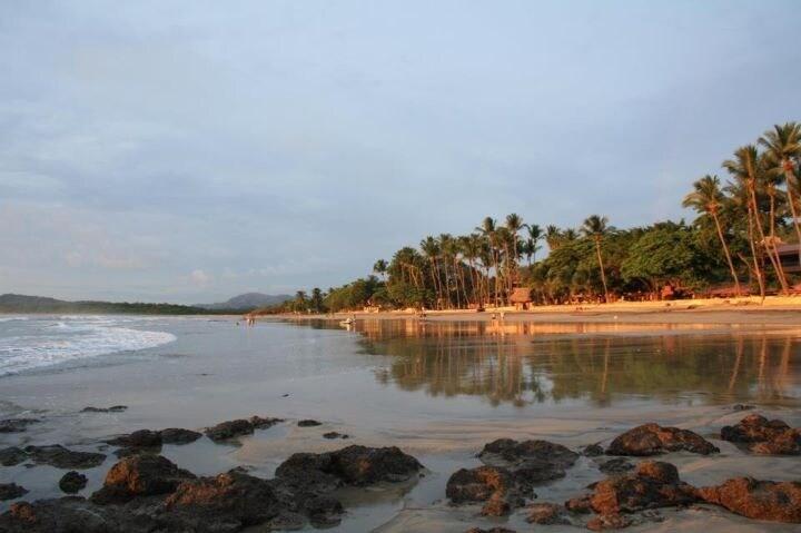 Tara from Playa Langosta