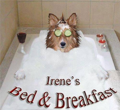 Irene from Bradford