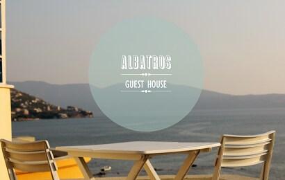 Albi from Vlorë
