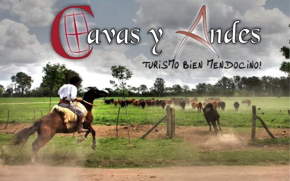 Cavas Y Andes Turismo