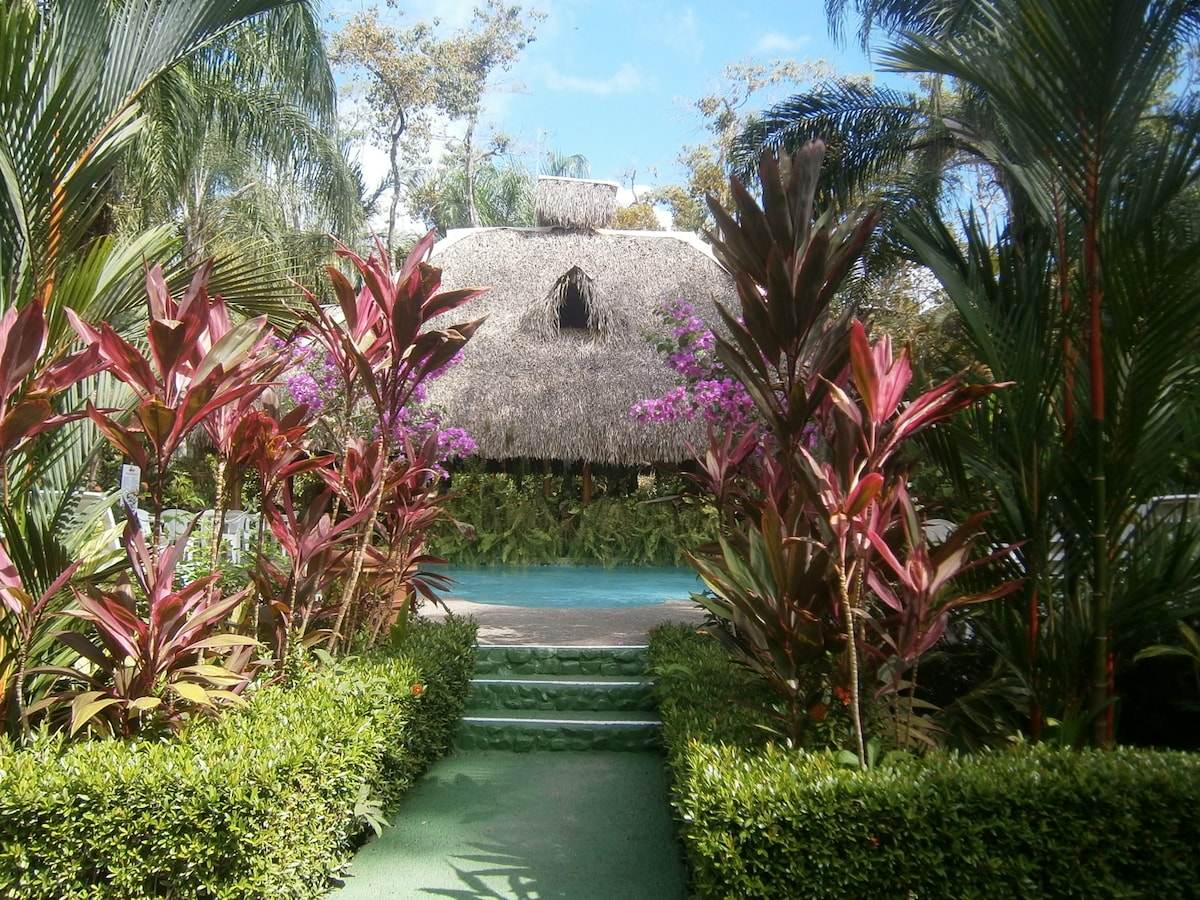 Hotel La Palapa Ecolodge Resort, the most beautifu