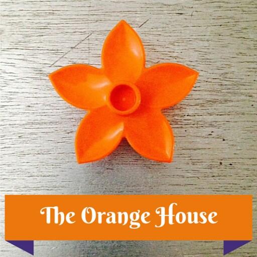 Orange from Pisa