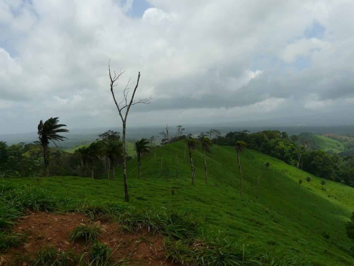 Tierra Madre from La Cruz