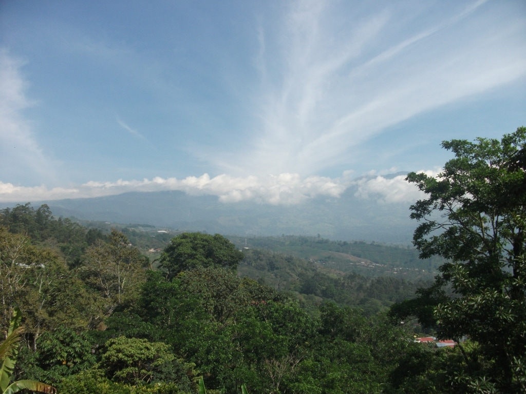 Jessie from Turrialba