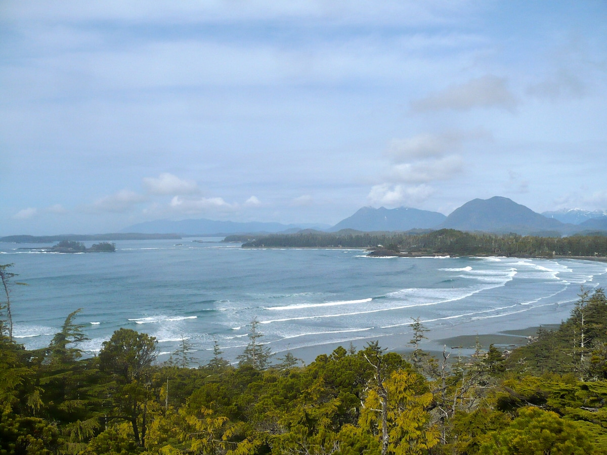 Wildernest from Tofino