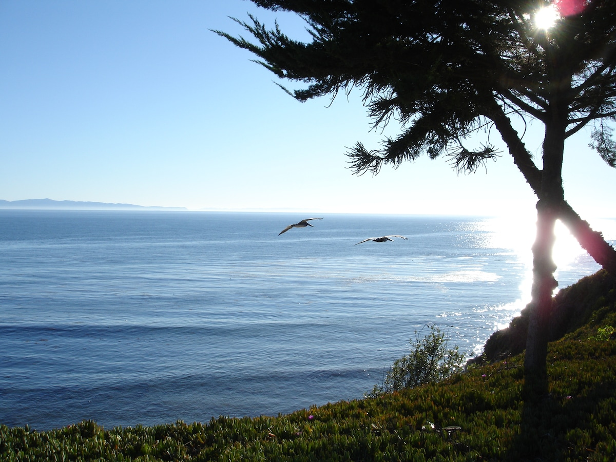 Catherine from Santa Barbara