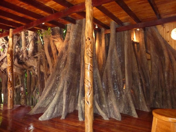 giants tree trunks throughout the tree house