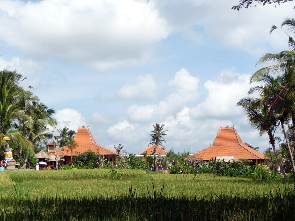 Umajati Retreat from across the rice fields