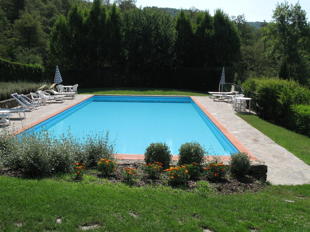 Apartments Villa with Swimming Pool