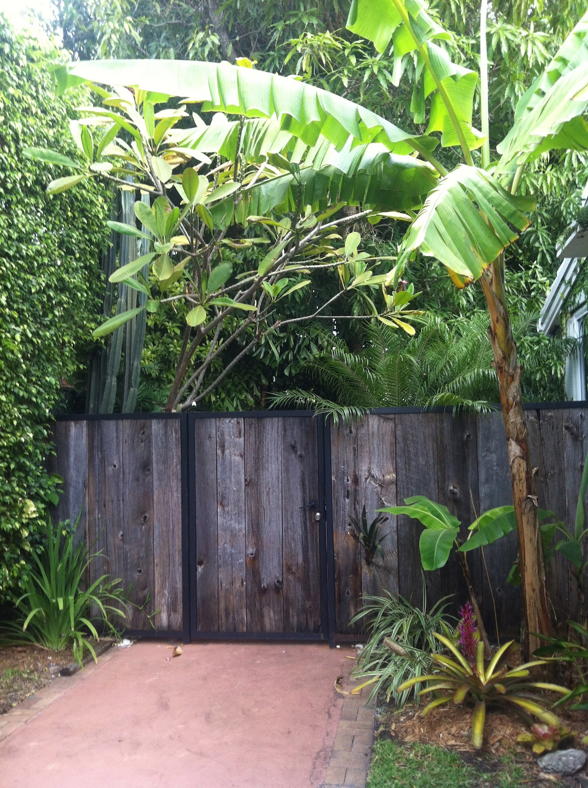 """Reclaimed wood fence and gate, private entryway leading to the """"Treehouse""""."""