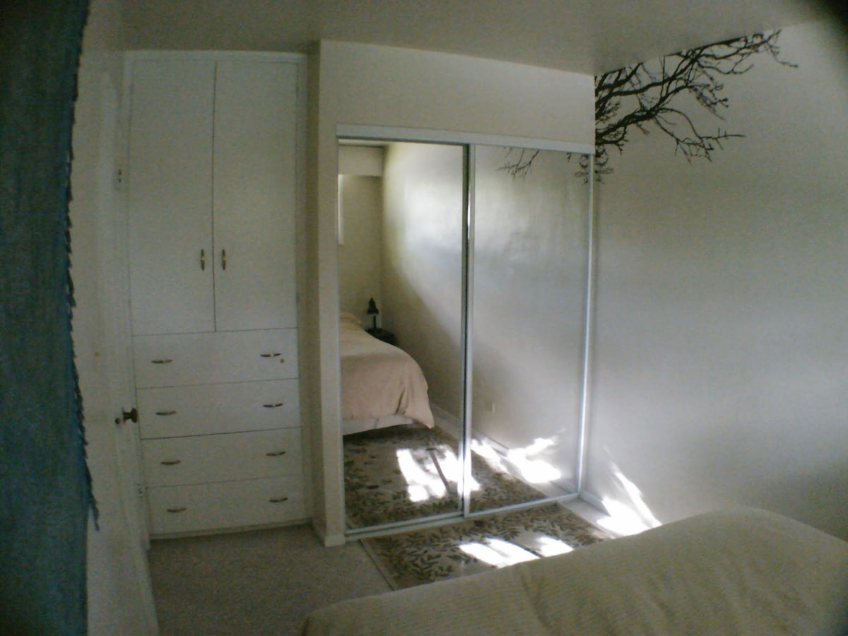 Forest room.