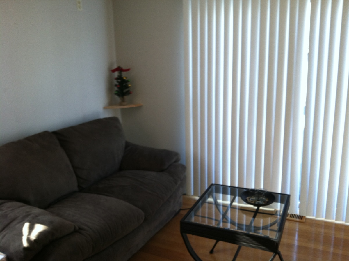 1bdrm walk to Downtown/Convention!