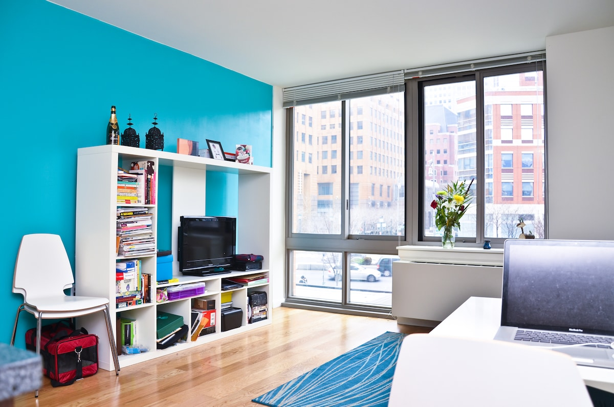 Luxury One BR Apt Brooklyn, NY