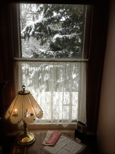 A Winter view from your bedroom window.