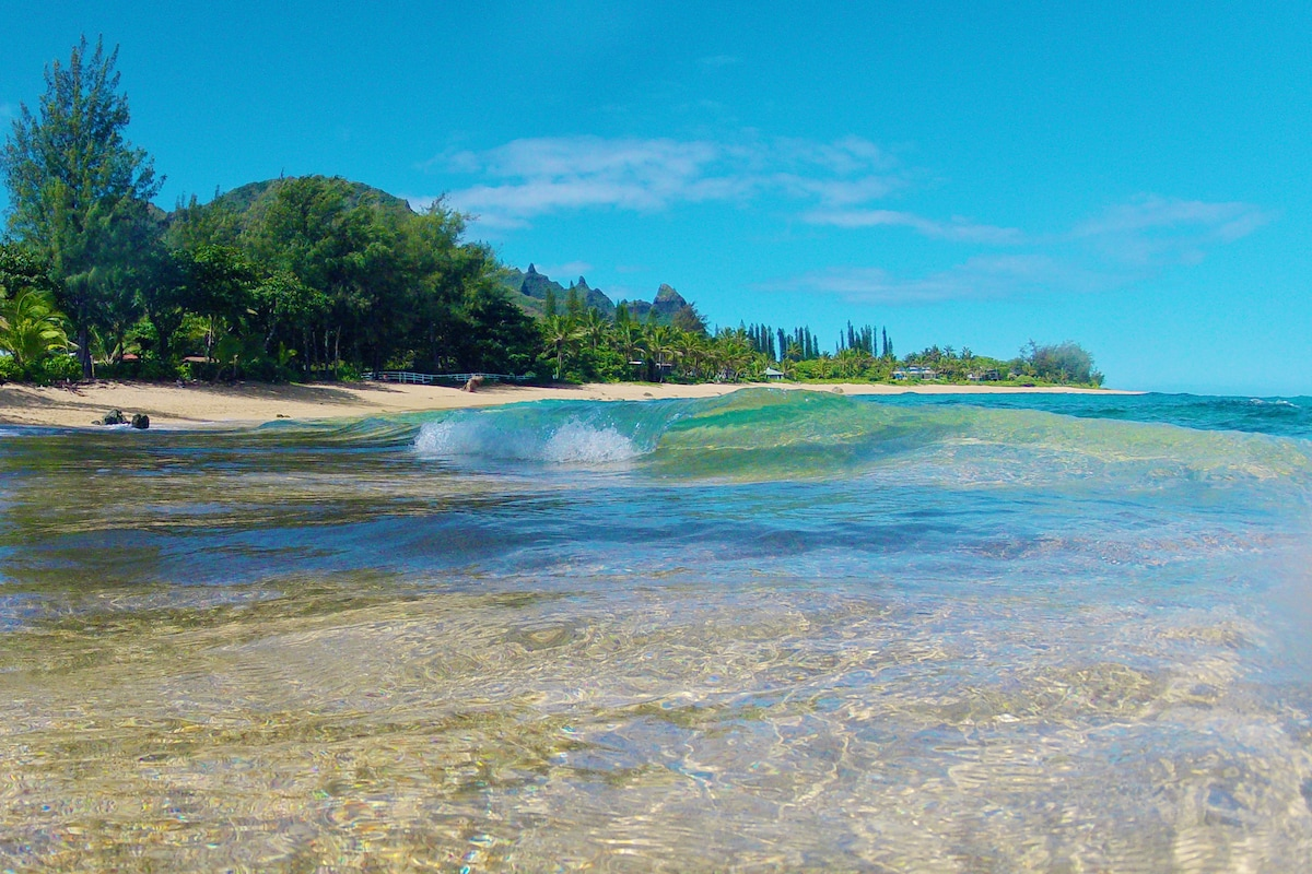 World Class Snorkeling and Surfing are just minutes away at Tunnels beach, Hanalei, and Ke'e