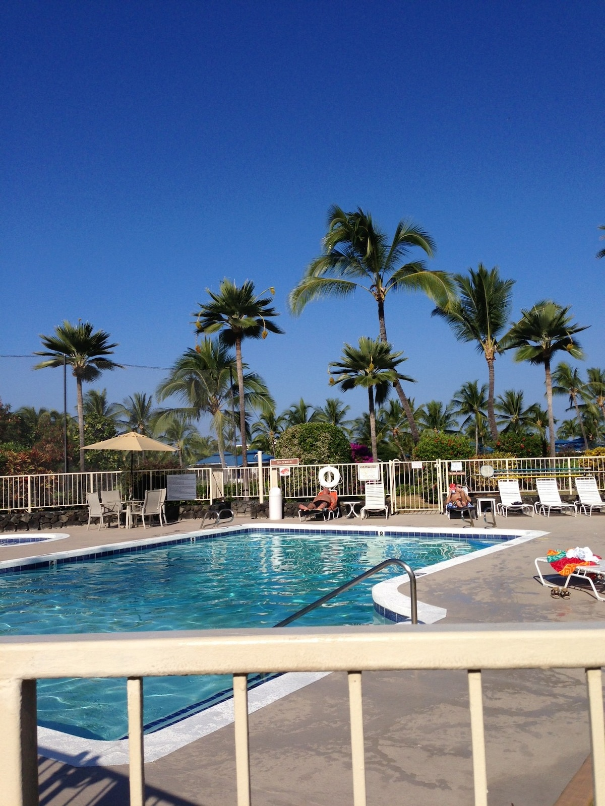 Beautiful gated pool, jacuzzi and grassy area for all day fun!