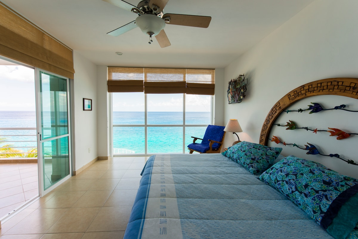 Master bedroom with floor to ceiling wall of glass, all from bed!