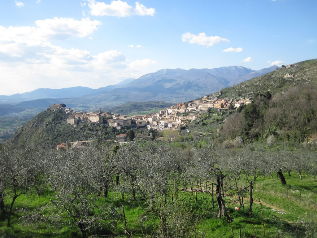"""SELF-CATERING GUEST HOUSE """"Arpino"""""""