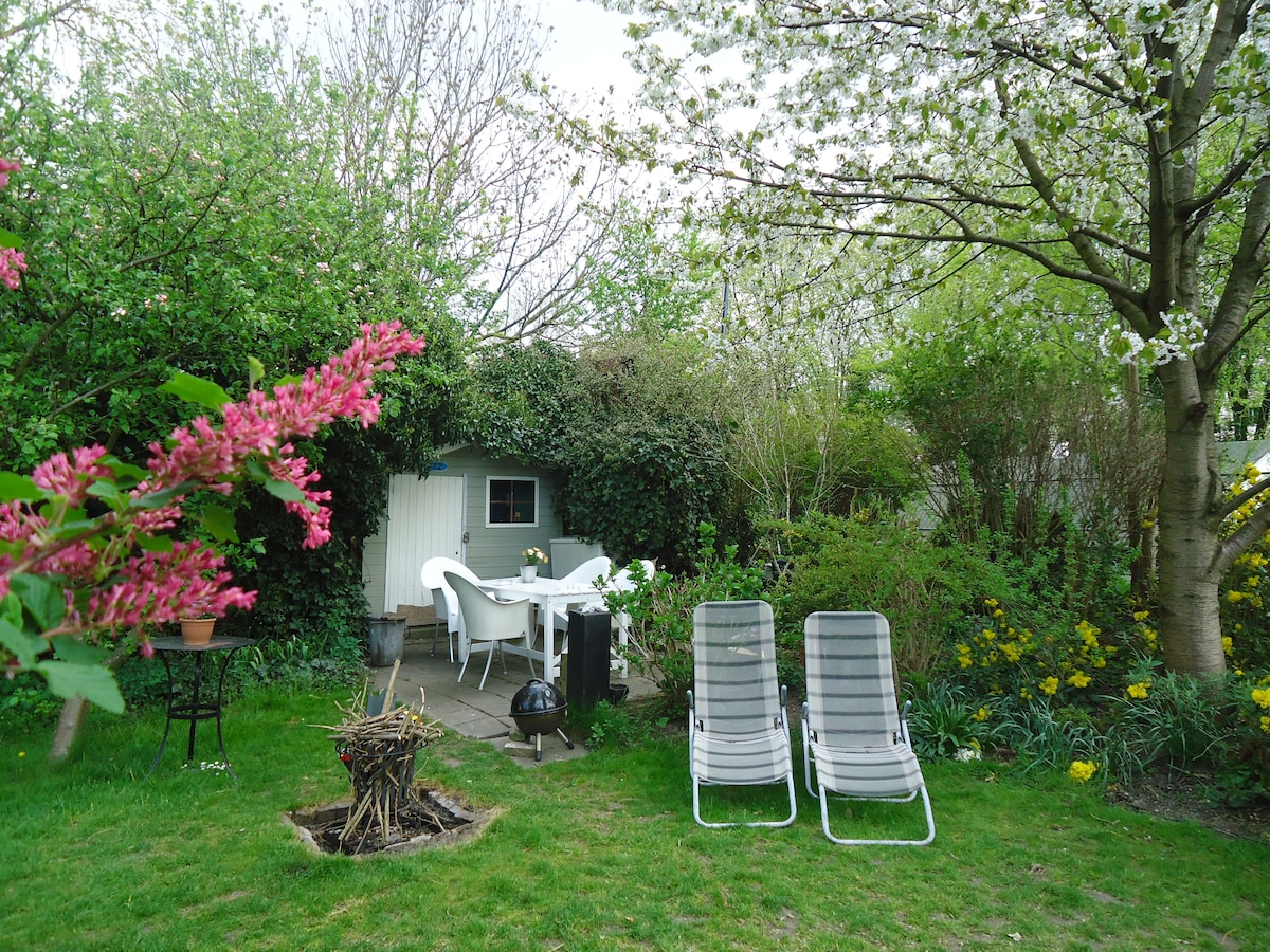 Our (always) sunny garden, green and full of flowers during Summer.