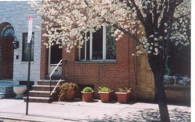 Front of house - Pear tree in bloom