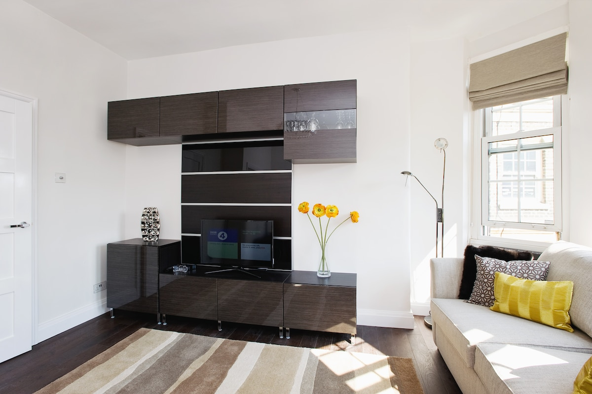 Sunny southfacing lounge with smart TV and internet radio and sofa bed with luxury mattress