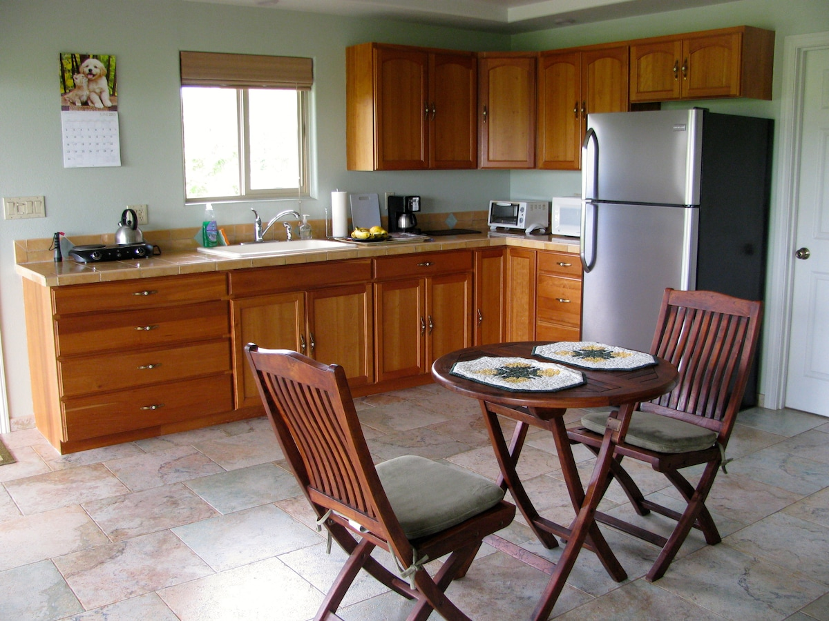 Large kitchen and eating area