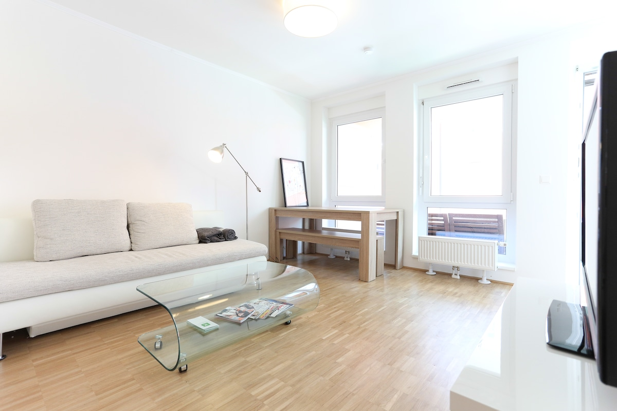 centr. Apartment + terrace, Vienna