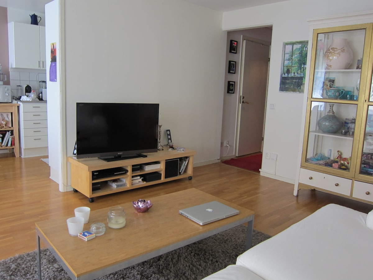 2-room apm right in the city centre