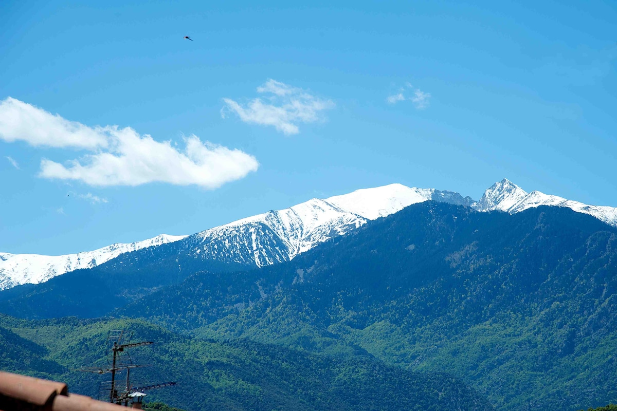 Mount Canigou, taken from the terrace.