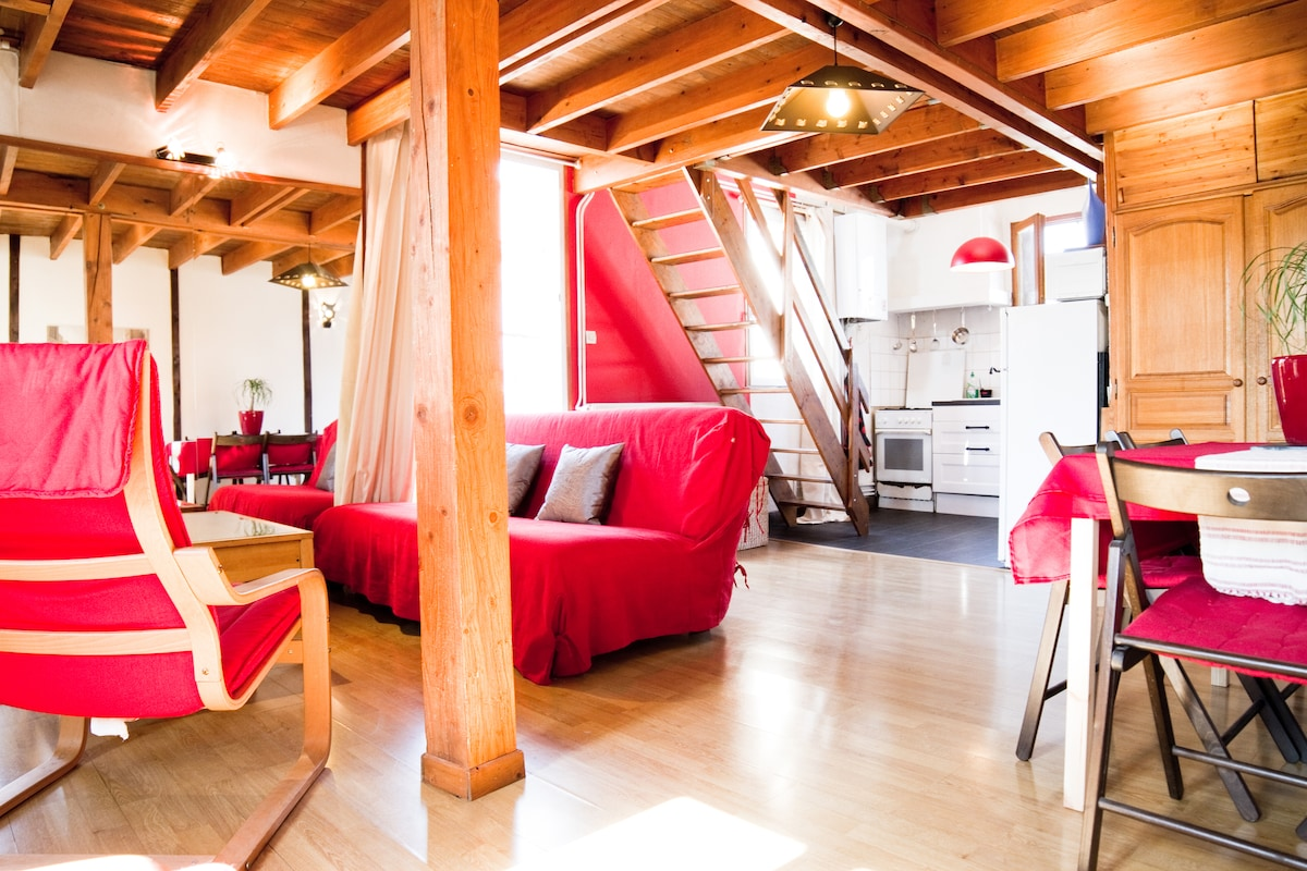 Lovely Duplex, Toulouse Center