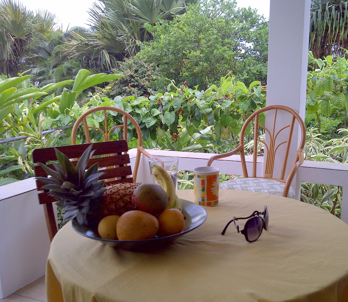 Veranda with view of Smithy's Garden Great for relaxing after a day at the beach and for enjoying tropical fruit and rum punches at sunset or keeping track of the hummingbirds who frequent the veranda.