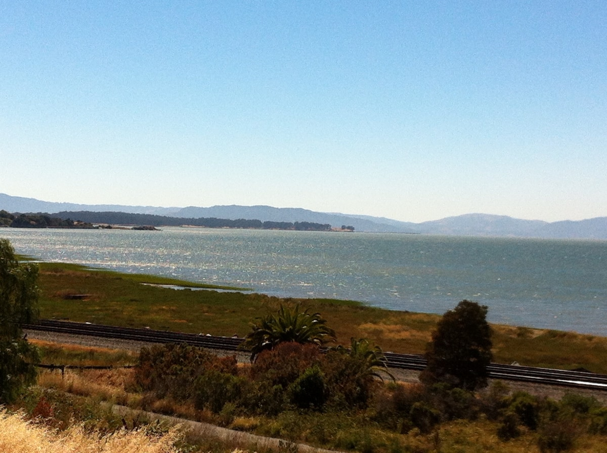 View of San Pablo Bay from Railroad Avenue, around the corner from the apartment.