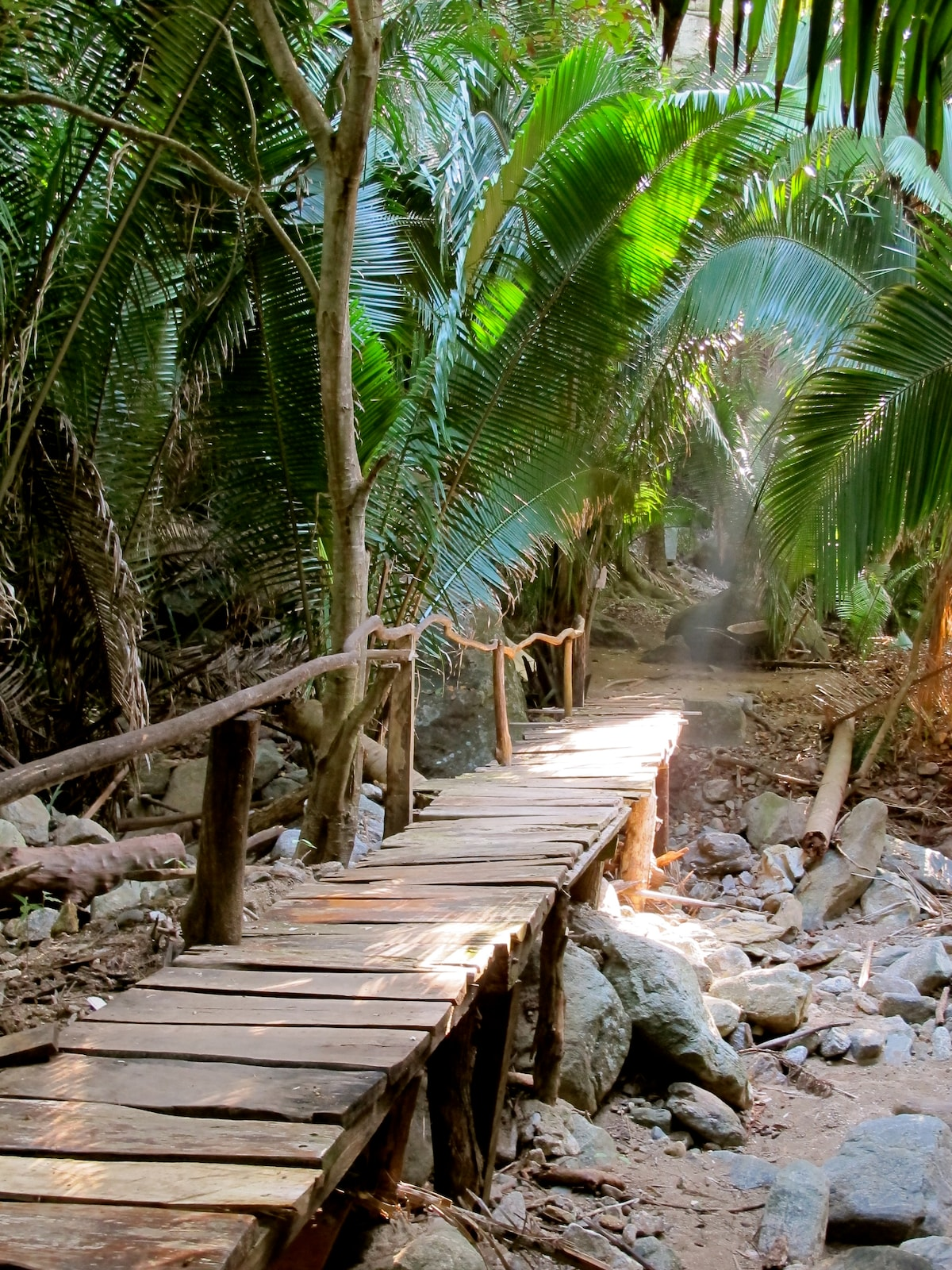 Bridge through the jungle to the palapa.