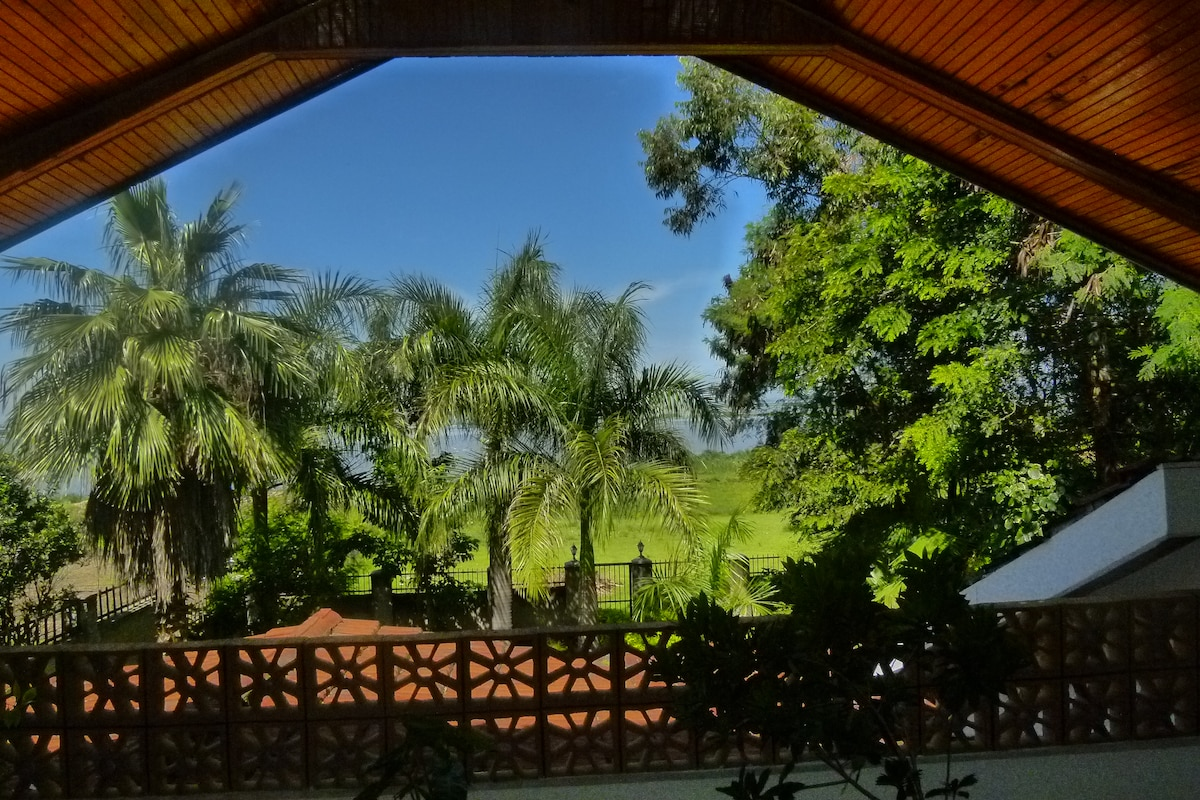 ...and this is the perpetual, palm-fringed view of the lake from the upper master terrace,...