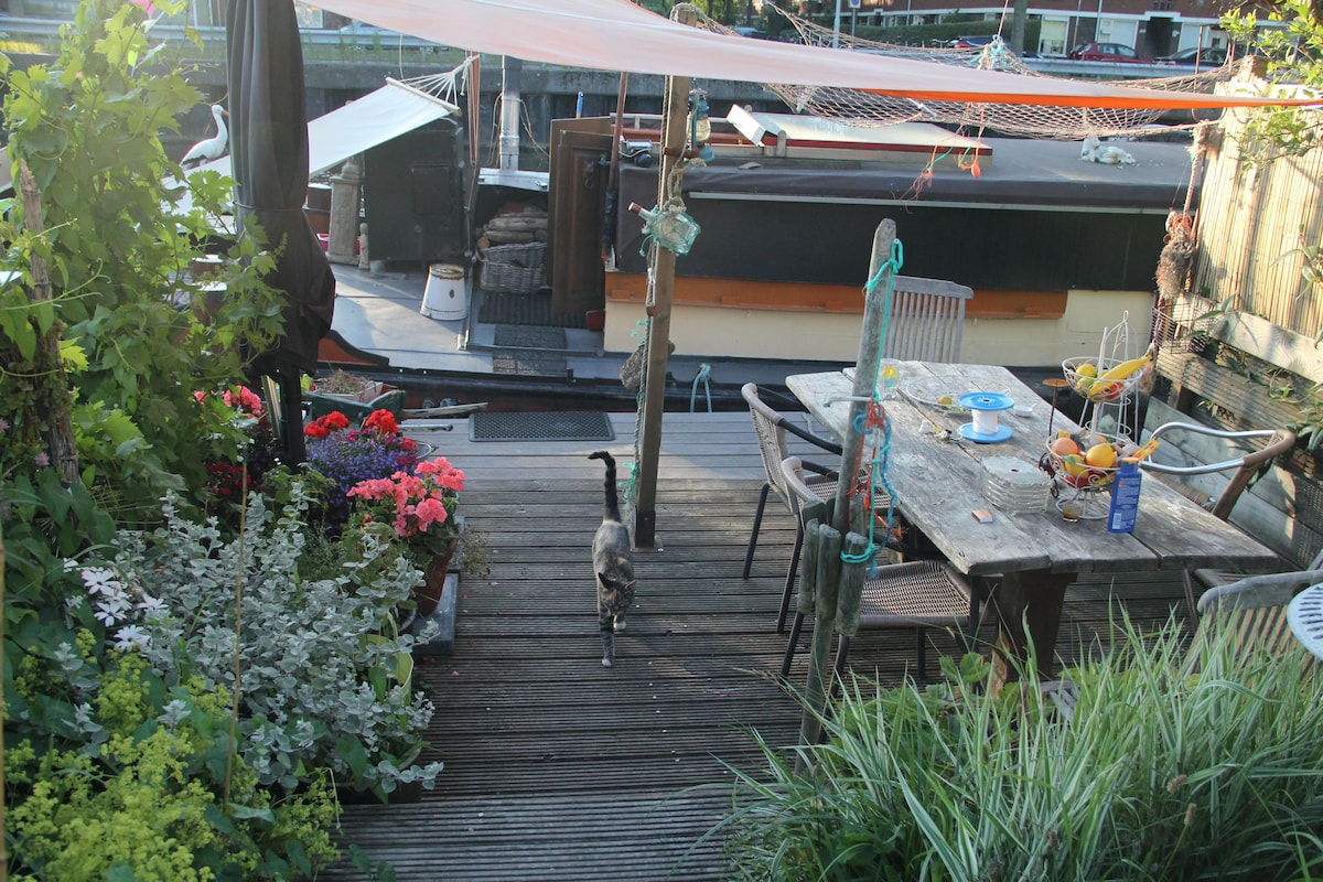 my cosy wooden terrace...