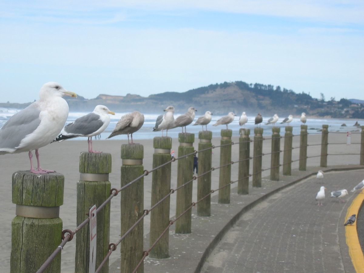 Ocean Hideaway on the Oregon Coast