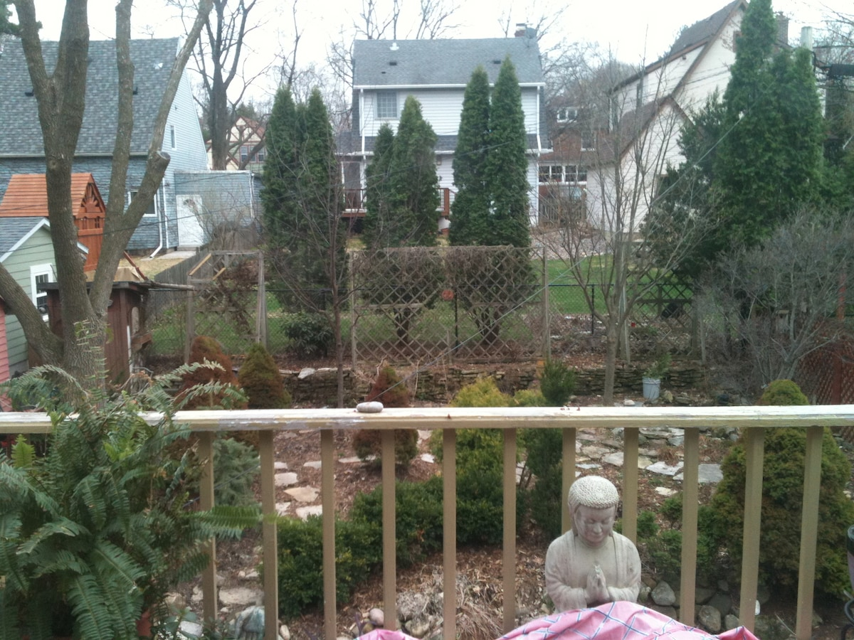 Back yard in early spring