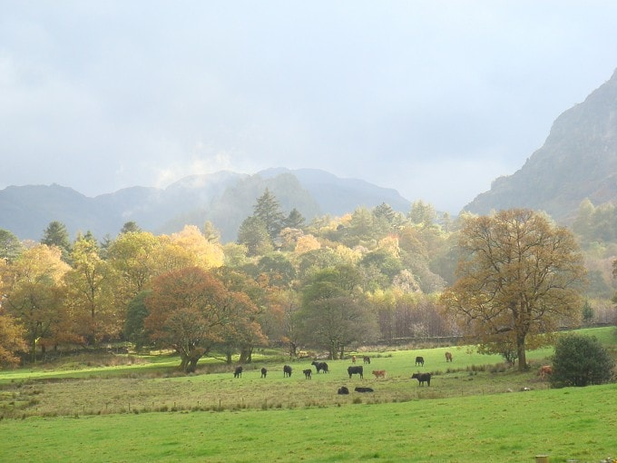 Looking up Borrowdale from Manesty in the autumn.
