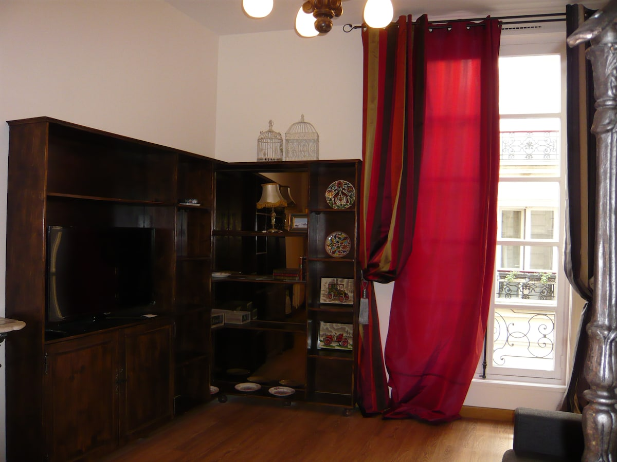 Very nice apartment, Paris, Centre