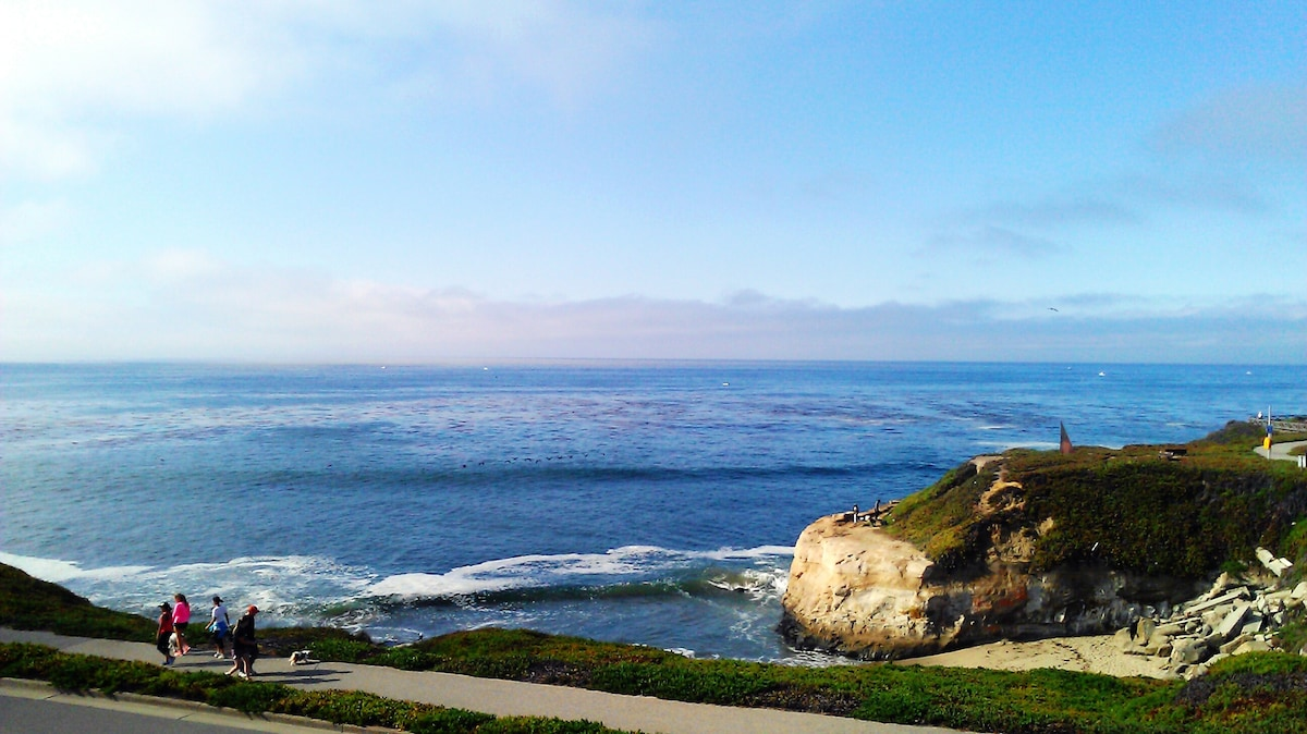 View of Monterey Bay from our home